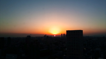 2011-01-08 17.02.jpg